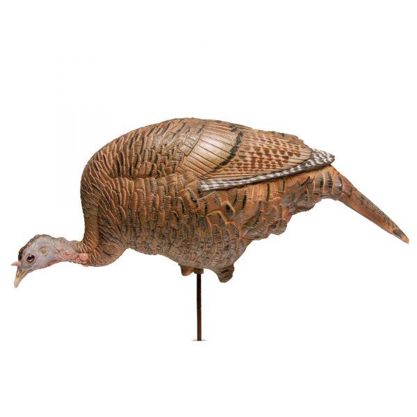 STANDING JAKE /& HEN w// FEEDING /& SUBMISSIVE HENS 4 Turkey Decoys Ultimate Flock